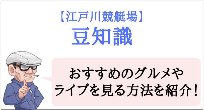 江戸川競艇場の豆知識
